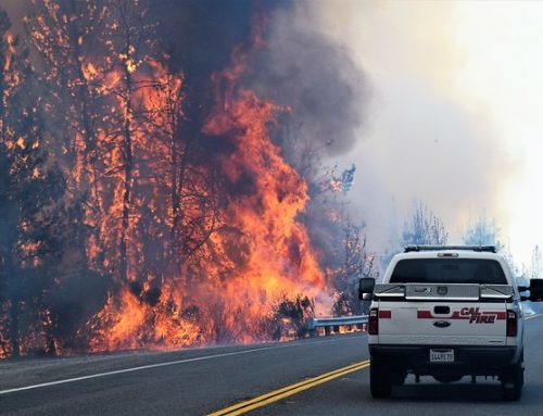 Visiting scholar has eyes on the road ― literally ― in search of wildfire impacts